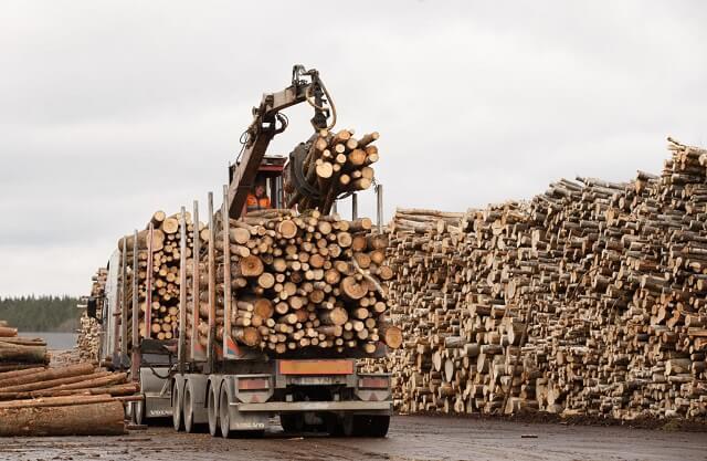Thị trường viên nén gỗ 2018 - 2024 -  1